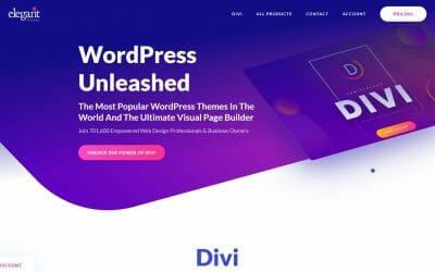 Why the Divi Theme? Short Summary of Divi