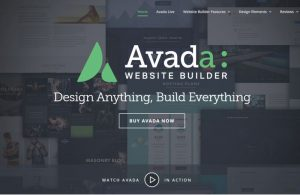 Avada Theme Overview