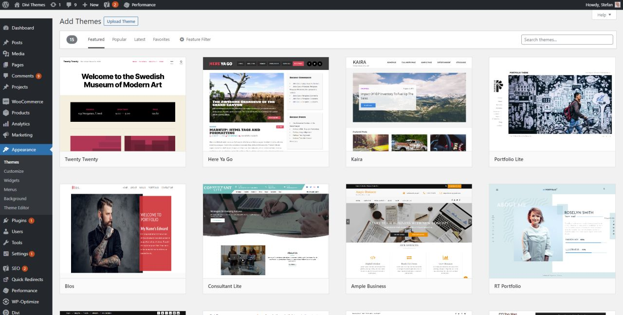 Themes Section WordPress